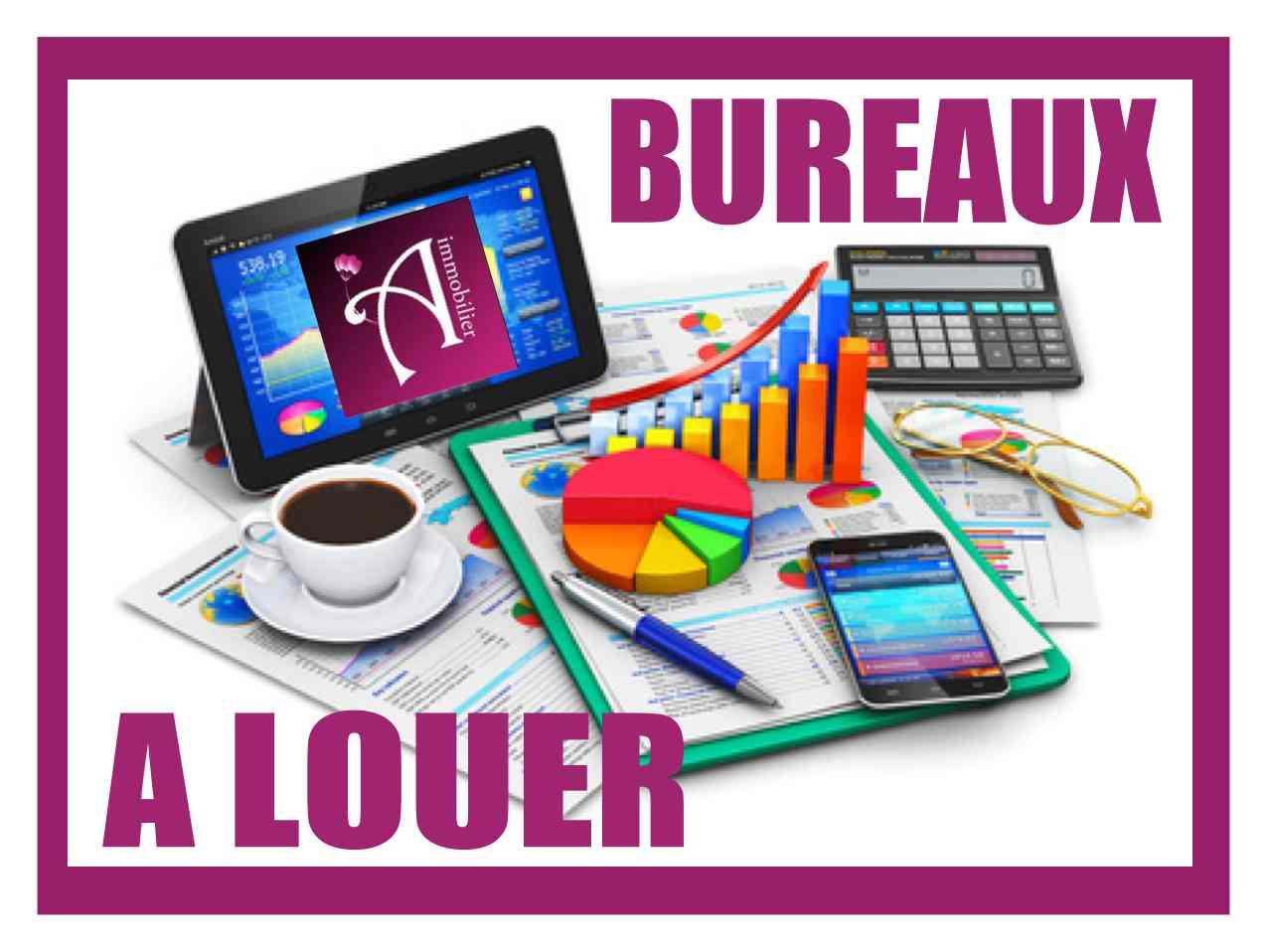 Location Immobilier Professionnel Bureaux Les Abymes 97139